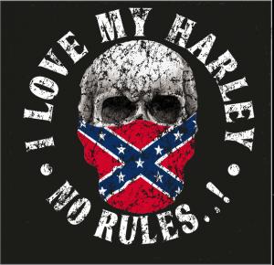 Confederate Skull